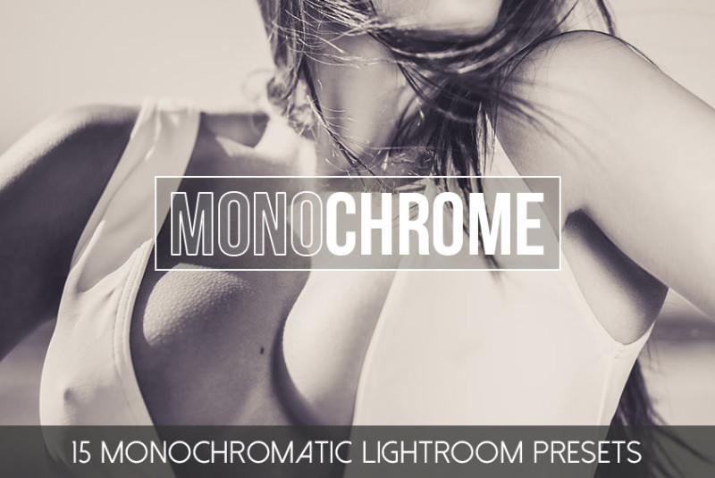 Lightroom_Presets_Monochromatic